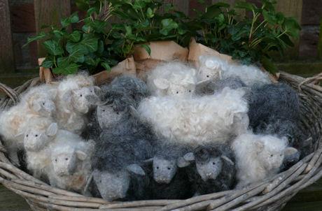 Mandje makke schapen weblog