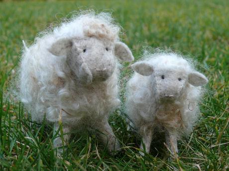 Makke schapen wollig wit weblog