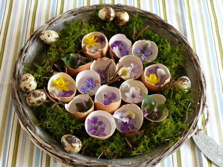 Bloemen en eierdoppen weblog