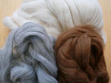 Alpaca weblog
