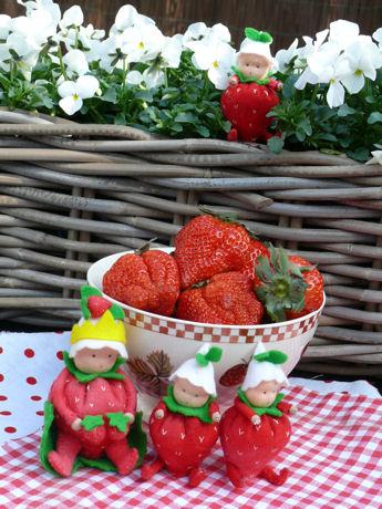 Aardbeien weblog