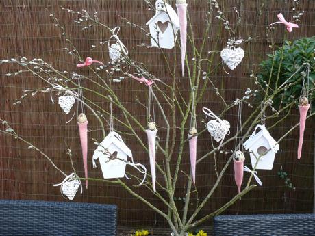 Voorjaarsboom weblog