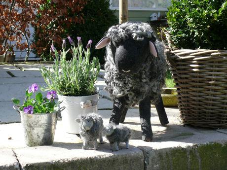 Tuinschaap op zijn plaats weblog