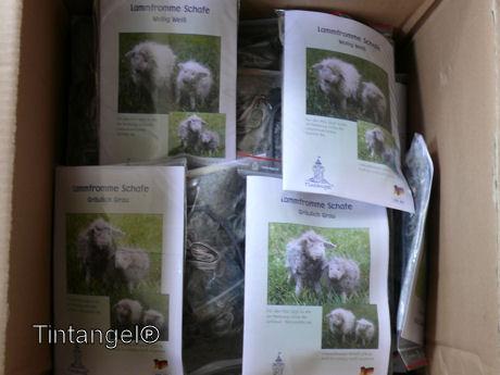 Duitse schaapjes weblog