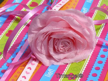 Roos op cadeautje weblog