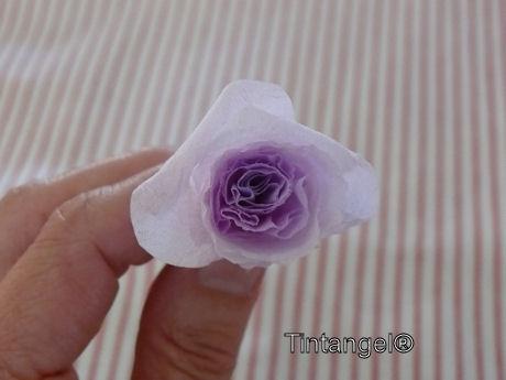 Stap voor stap roos 4w