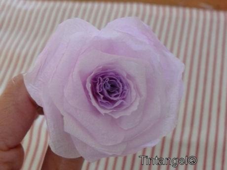 Stap voor stap roos 9w