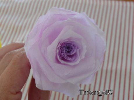 Stap voor stap roos 10w