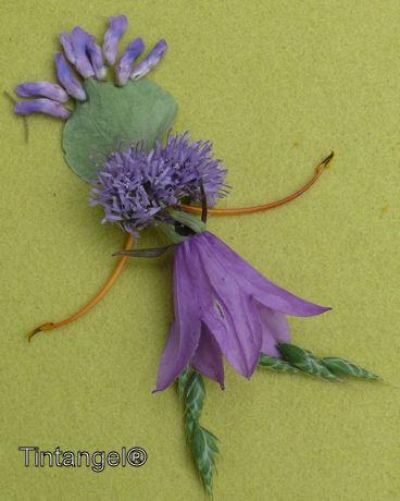 Bloemenelfje weblog