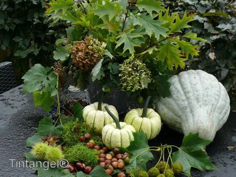 Herfst op tafel w