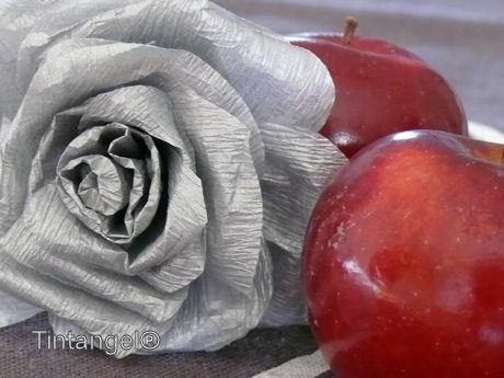 Rood en zilver w