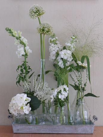 Witte bloemen weblog