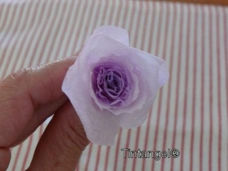 Stap voor stap roos 5w