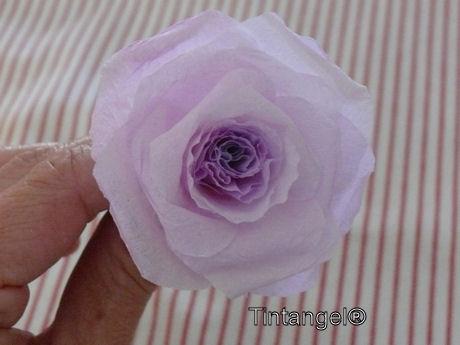 Stap voor stap roos 8w