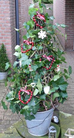 Wel of niet kerstboom weblog