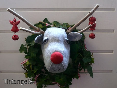 Rudolf is er ook web