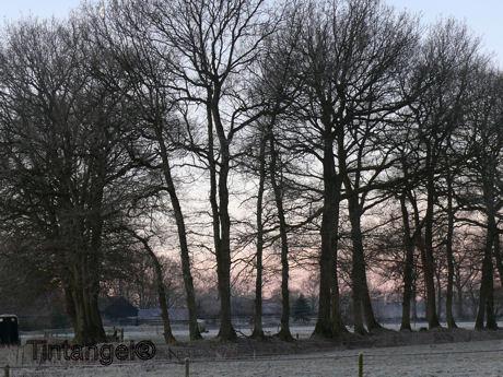 Wintertje 2w