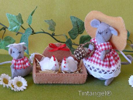 Miny en haar kippetjes weblog