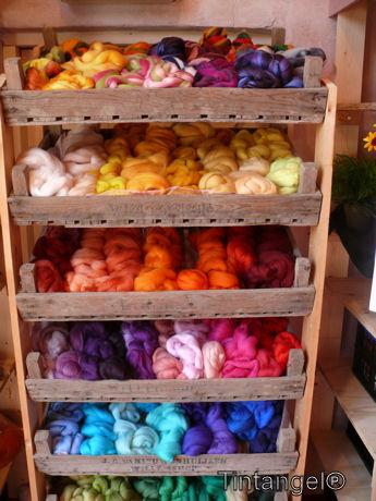 Kleurtjes wol