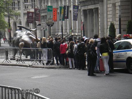 Stier van Wallstreet