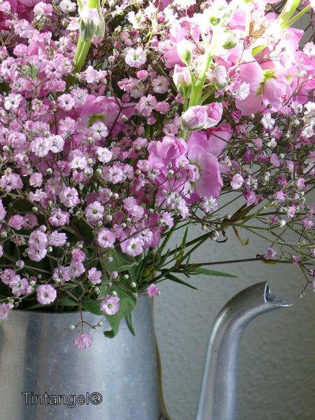Roze bloemen web