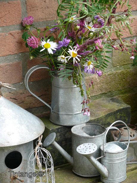 Fleur in de tuin web
