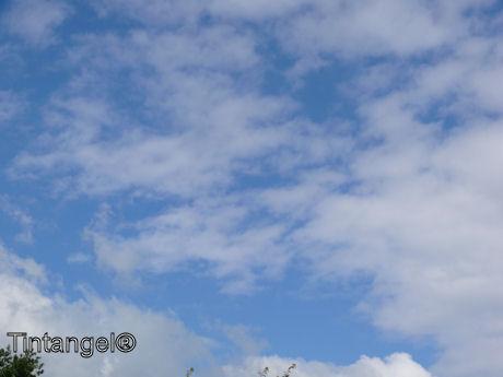 Blauwe lucht web