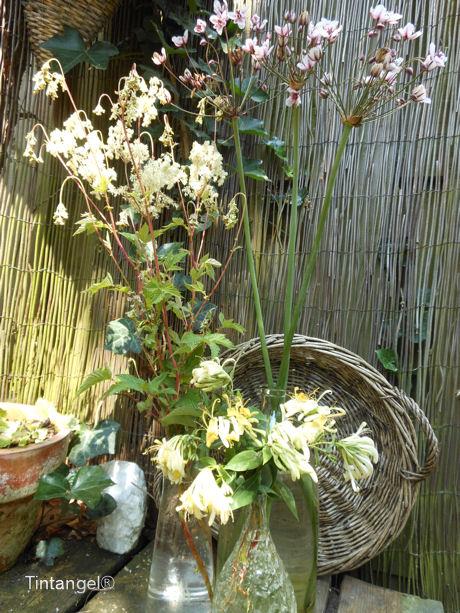 Vaasjes en bloemen web