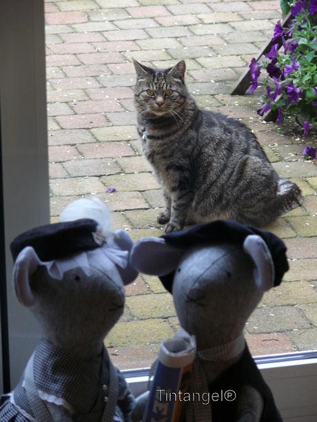 Poes en muizen