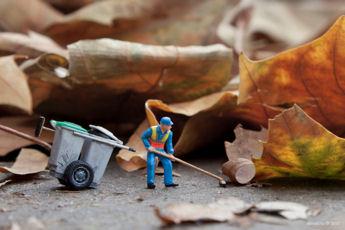 Dead Leaves 1a - blog