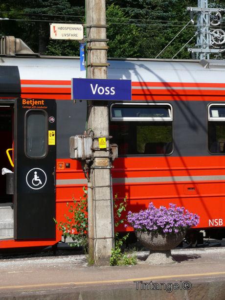 Station Voss