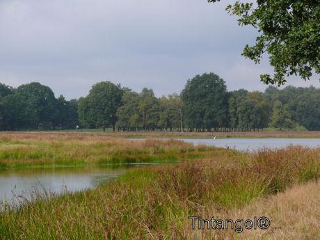 Mooie Drentse land