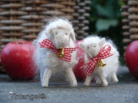 Kerstschaapjes