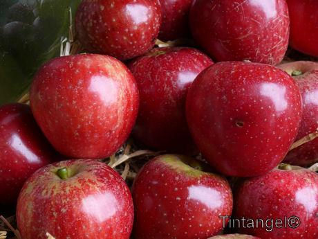 Glanzend rood