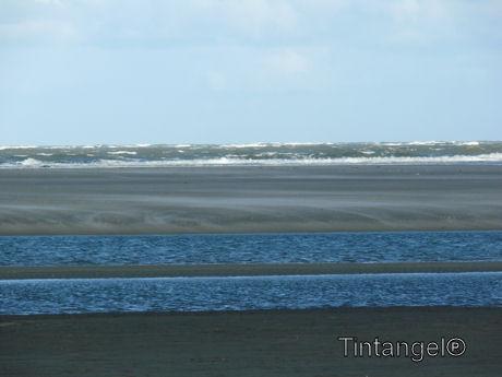 Zee en strand w