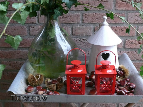 Rode lantaarntjes