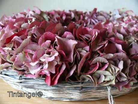Vol bloemen