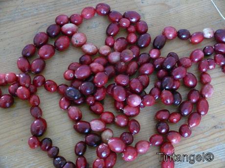 Cranberrie ketting