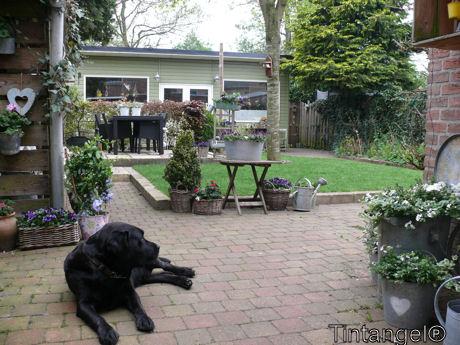 De tuin