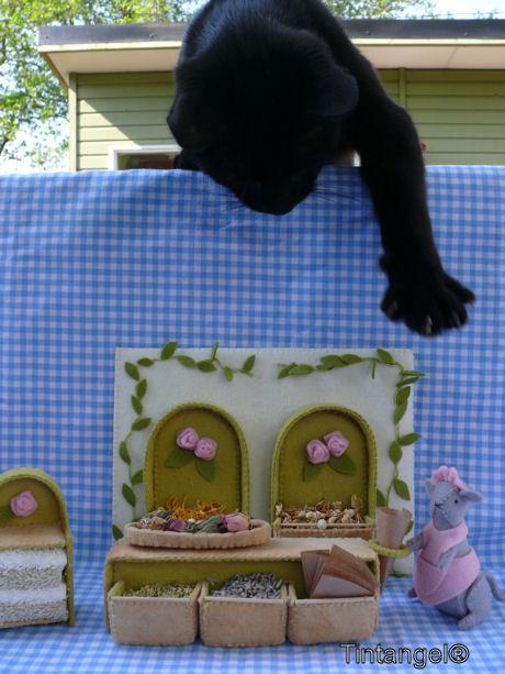 Figaro komt grijpen web