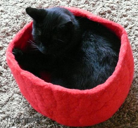 Figaro in het mandje