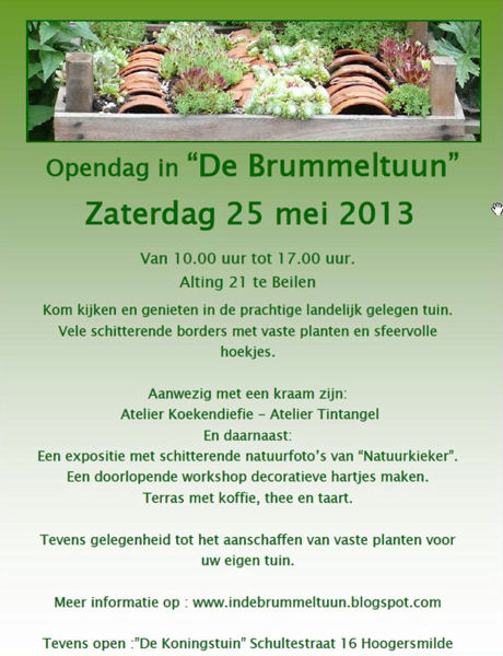 Poster Brummeltuun 2013 450-600