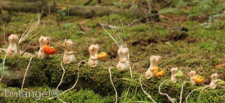 Met de oogst 2 blog