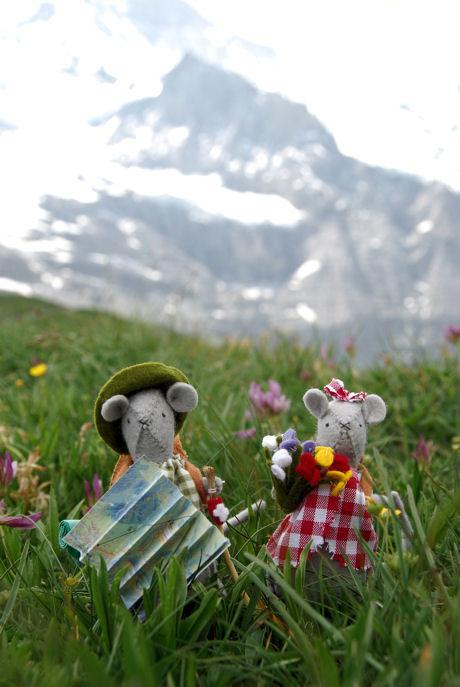 Morris en Miny op de alpenweide