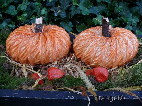Hoe Maak Je Halloween Pompoenen.Knutsel Tutorial Lichtgevende Pompoenen Van Flexbuis