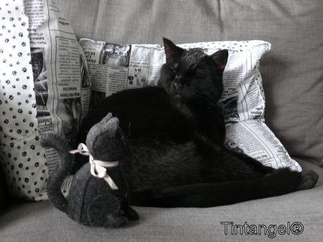 Figaro en Figaro 1