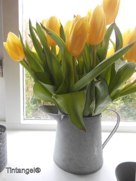 Kan met tulpen