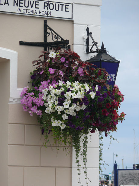 St Aubin hanging basket blog