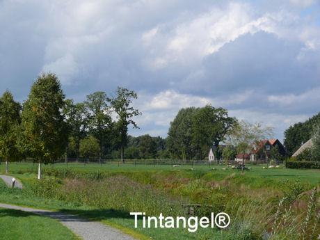Hollandse luchten 1