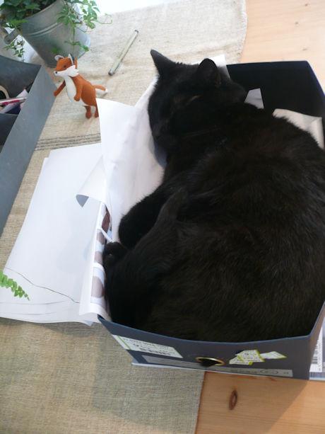 Figaro in de doos 2